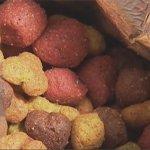 La marque Beneful de Purina a empoisonné et tué des milliers de chiens selon un procès