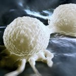 """""""Arrêtez de manger cela immédiatement"""", préviennent des chercheurs sur le cancer"""