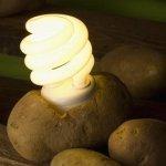 Eclairez votre chambre pendant un mois entier en utilisant une pomme de terre !!! - Vidéo