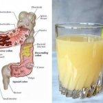 Le jus de nettoyage du côlon à 3 ingrédients : Comment les pommes, le gingembre et le citron peuvent expulser des kilos de toxines de votre corps