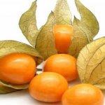 Ce petit fruit est un véritable trésor: il guérit la prostate et prévient le cancer de l'estomac et du côlon