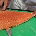 Le saumon d'élevage - l'un des aliments les plus toxiques au monde